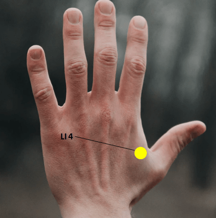 Top 7 Acupressure Point For Back Pain - TrickyEdu